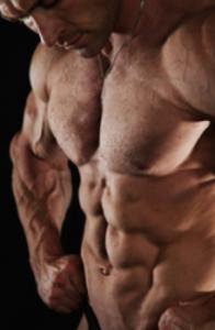 proviron muscle culturiste