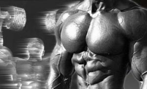 muscle culturiste