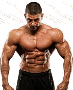 steroide origine muscle