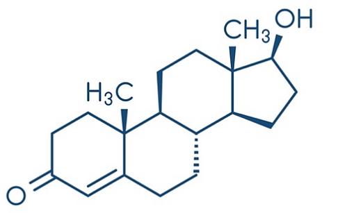 sustanon 250 force bien-etre graisse steroide trt structure chimique